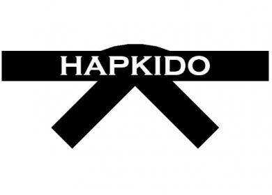 hapkido-video